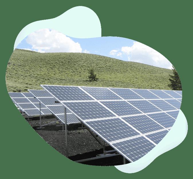 contribution-carbon-neutrality-solar-panel-csr